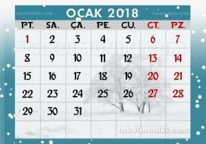 Ocak 2018 Takvimi