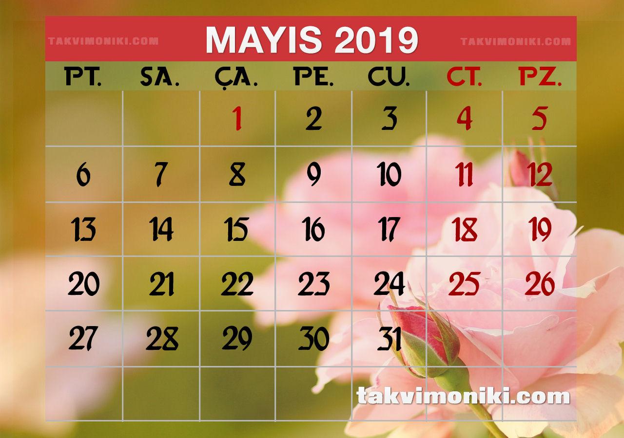 Mayıs 2019 Görsel Takvim