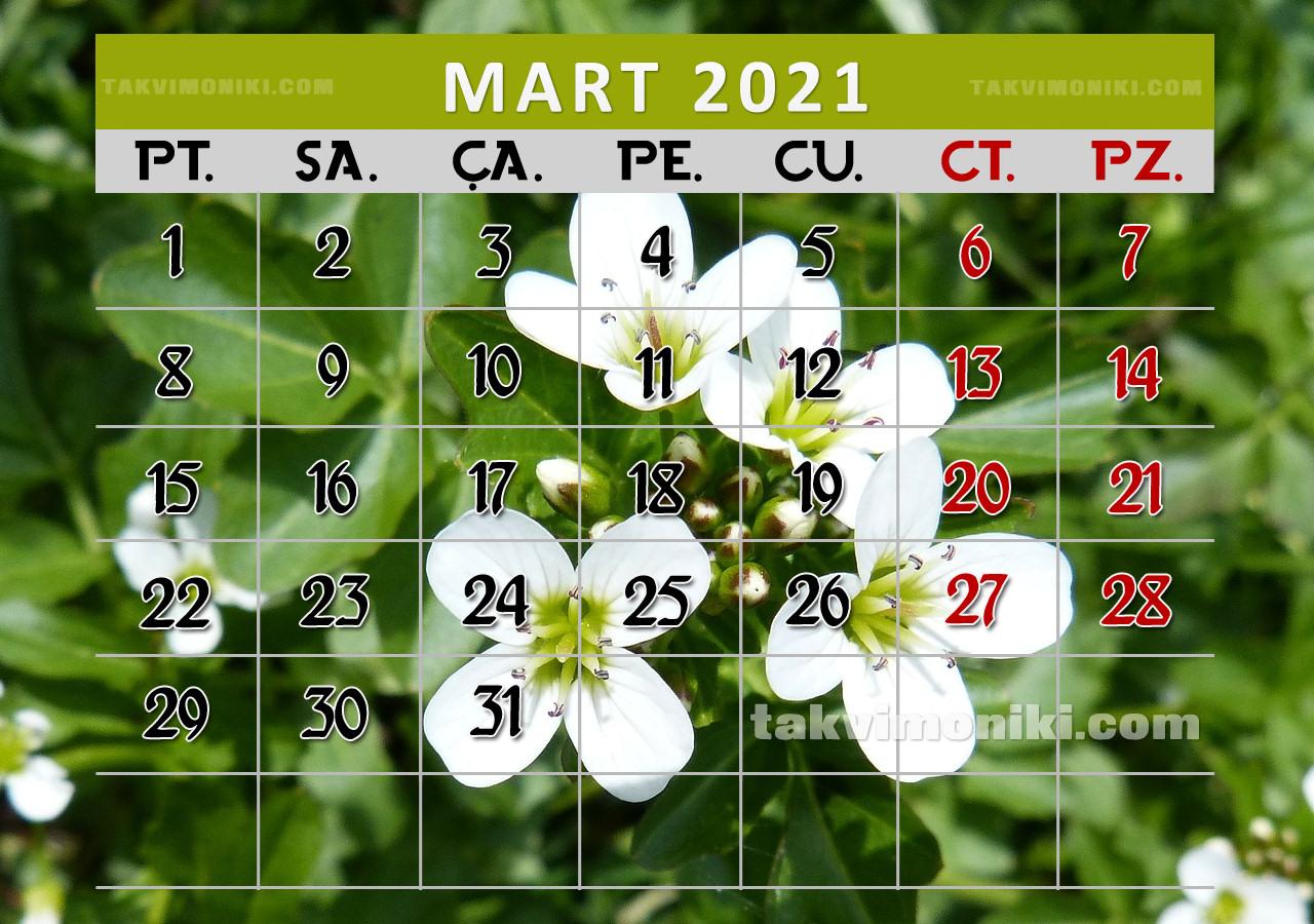 Mart 2021 Görsel Takvim
